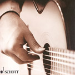 Konzertgitarren Schulen