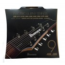 Ibanez IEGS9 9-String Set